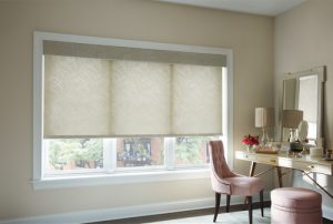 Hunter Douglas Roller Shades