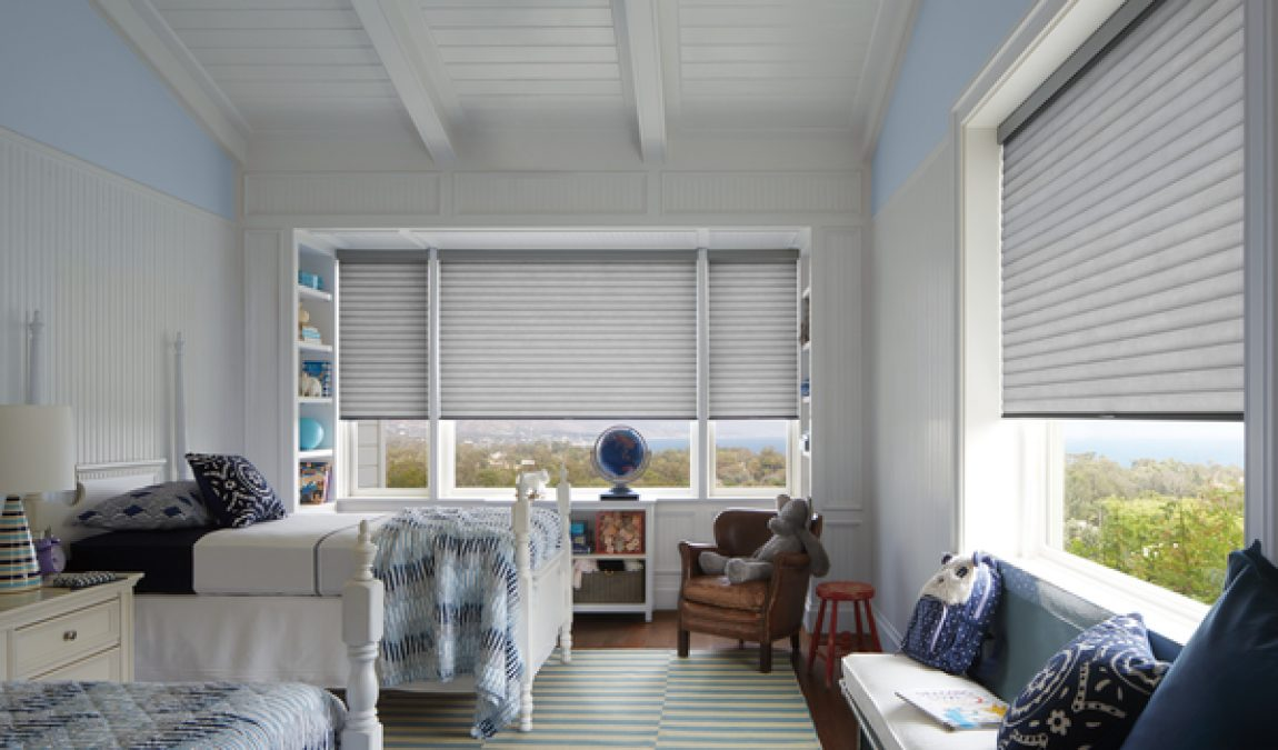 Looking for Window Treatments? Try Hunter Douglas Roller Shades